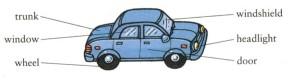 188大網cn pic car